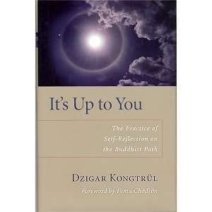 It's Up To You by Dzigar Kongtrul Rinpoche
