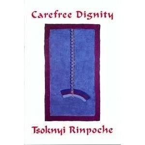 Carefree Dignity: Discourses on Training in the Nature of Mind -- by Tsoknyi Rinpoche