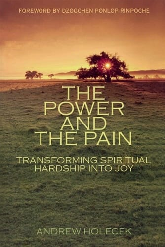The Power and the Pain <br>Transforming Spiritual Hardship into Joy <br>by Andrew Holocek