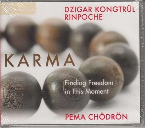 Karma <br>Finding Freedom in This Moment <br>with Dzigar Kongtrul Rinpoche and Pema Chodron on 2 CDs
