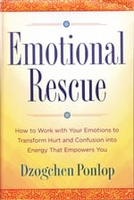 How to Work with Your Emotions to Transform Hurt and Confusion into Energy That Empowers You