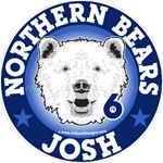 Bear car window sticker decals & magnets