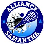 lacrosse car window sticker decal cling magnet