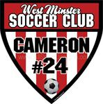 soccer window sticker decal clings & magnets