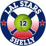 softball window stickers decals clings & magnets
