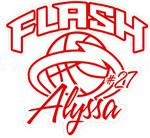 TN Lady Flash basketball stickers decals magnets & wall decals
