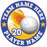 volleyball car window sticker decal