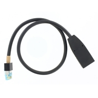 Polycom Walta 12 Inch Cable