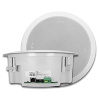 Viking 40-IP Ceiling & Wall Speaker
