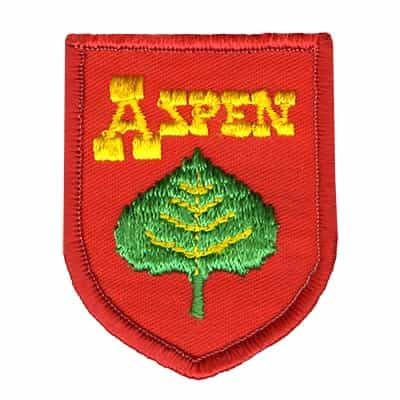 Aspen Green Leaf Vintage Ski Patch