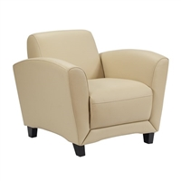 Santa Cruz Mobile Lounge Chair