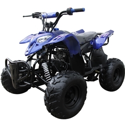 Coolster 110cc ATV Polaris