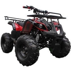 Coolster 125cc ATV With Big Tires