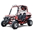 DF 200cc Go Kart Power Buggie