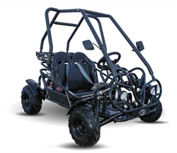 KD 110cc GoKart Power Buggie