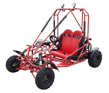 110cc Go Kart Power Buggie