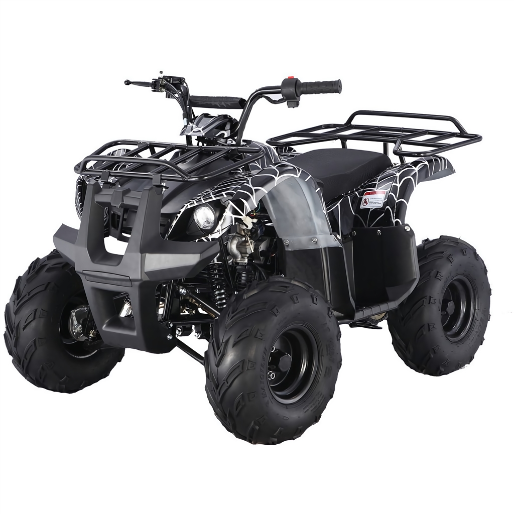 125cc atv. Black Bedroom Furniture Sets. Home Design Ideas