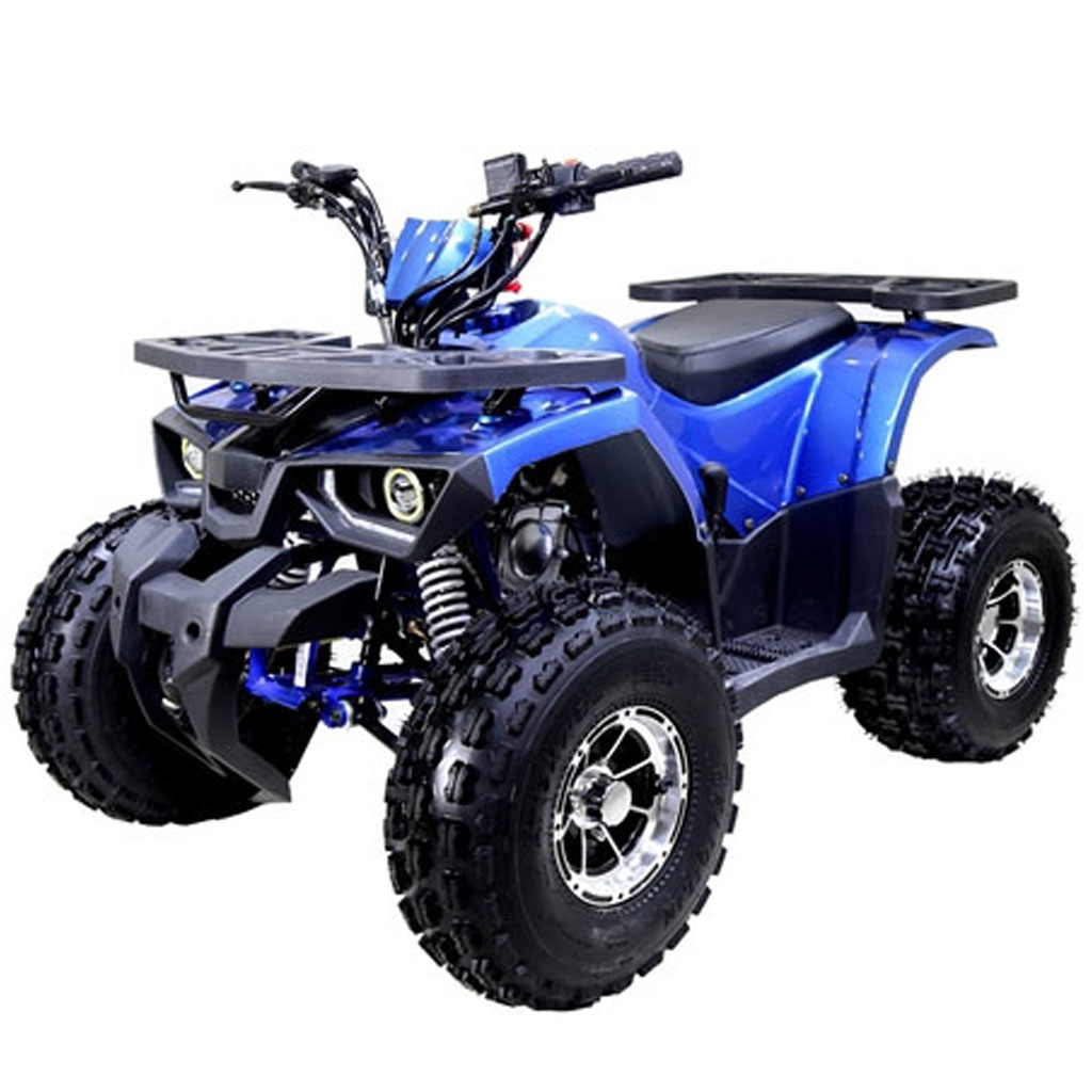 125cc atv raptor for Atv yamaha raptor 125cc