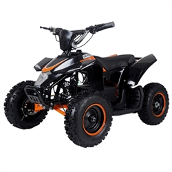 TAOTAO E2 500 Electric ATV