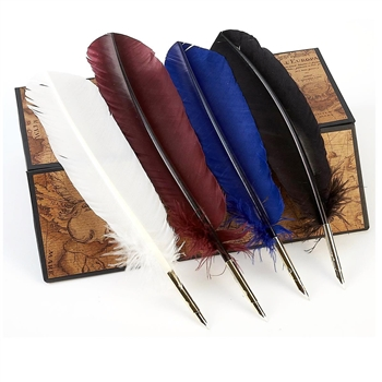 Turkey Feather Quill Pen with nib to dip into ink