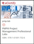 PMP: Project Management Professional Lab