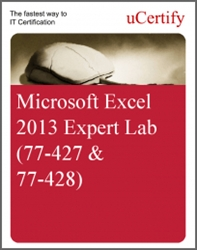 Microsoft Excel 2013 Expert Lab