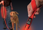 Nite Dawg L.E.D. Leash