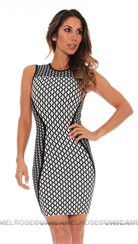 Torn by Ronny Kobo Black White Tali Dress