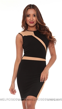 Torn by Ronny Kobo Black Adina Dress