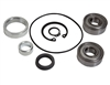 KT3308 PROMAX Shaft Seal Ball Bearing Replacement Kit (CP1320 Compressors)