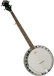 Washburn B11K 5-String Bluegrass Banjo Mahogany Resonator w/ Hard Case