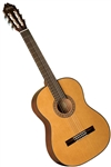 Washburn C40 Classical Acoustic Guitar - Natural