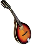 Gold Tone GM-50 A-Style Mandolin w/ Free case, setup and shipping