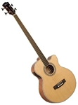 Johnson JB-24F-NA Fretless Deep Body Acoustic Jumbo Bass Guitar