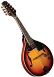 Morgan Monroe RT-M1E Rocky Top Series A-Style Acoustic/Electric Mandolin
