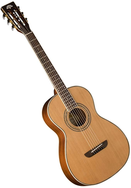 Washburn WP11SNS Acoustic Guitar