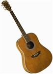Washburn WSJ124K Southern Jumbo Acoustic Guitar w/ Hard Case