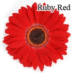 Ruby Red Gerbera Daisies - 72 Stems