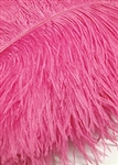 "17-21"" Ostrich Feathers - Hot Pink (1/2 Pound)"