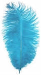 "17""-21"" Ostrich Feathers - Turquoise (Pack of 12)"