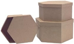 Paper Mache Hexagon Box Set Of 3