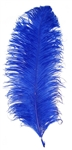 EXTRA LARGE, Ostrich Wing Plumes 25''-29'', Royal Blue (1/2 Pound)