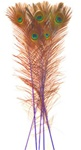"Dyed Blue Peacock Feathers 35""-40"" (Pack of 100)"