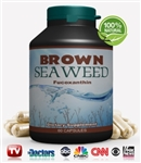 Brown Seaweed (Fucoxanthin)