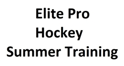 Pro Hockey Performance Training Camp 2017