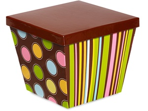 Chocolate Buttons Box