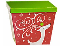 Dashing Reindeer Box 12 piece