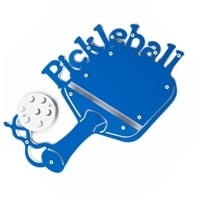 PIckleball Plaque, choose from blue or green.