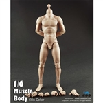 "Boxed Figure: COO Models 10.6"" Muscle Body (CM-B34004)"
