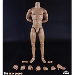 "Figure: COO Models Muscle Male Body 10.6"" (CM-BD010)"